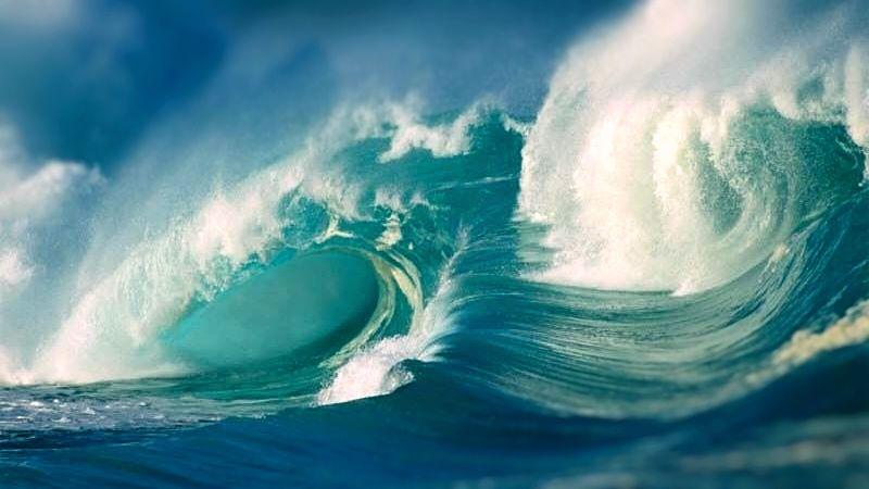 vlna-moře